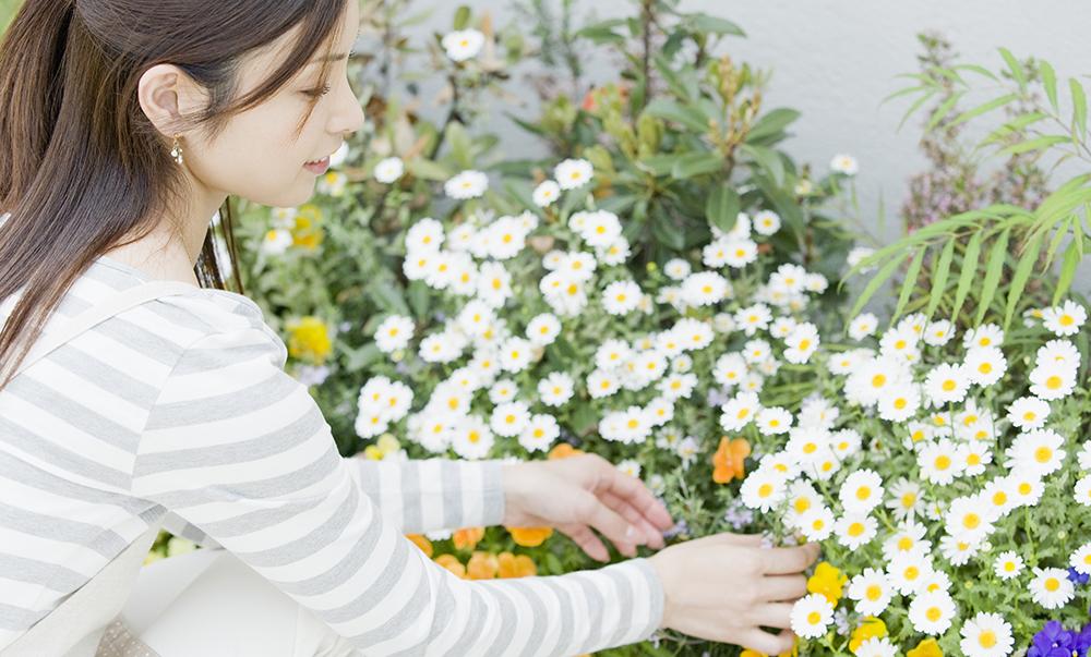 好きな花や植物と一緒に暮らす。日々を豊かにする庭づくりをお手伝い。