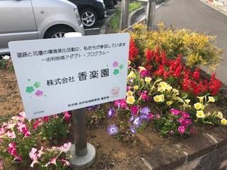 ~令和元年度の花壇~